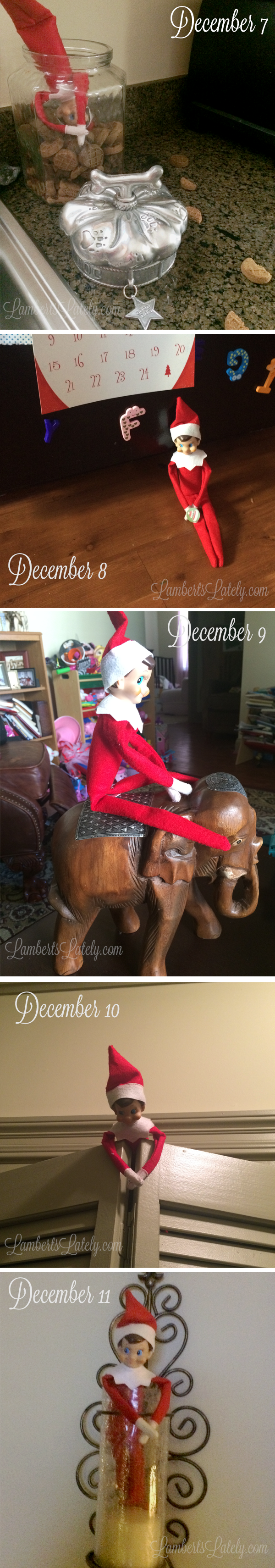 The Many Adventures of Eddie the Elf...a few of the hijinks of our Elf on the Shelf (plus a few ideas for you!)